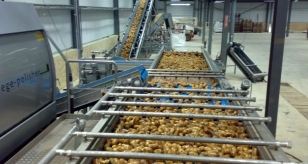 phoca_thumb_l_modular-brushing-washing-and-sizing-of-potatoes-in-wyma-potato-wash-line.1455705268